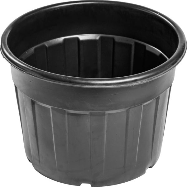 Купить контейнер для голубики 120 литров