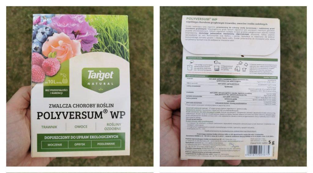 Поливерсум - биофунгицид для защиты голубики от серой гнили и антракноза