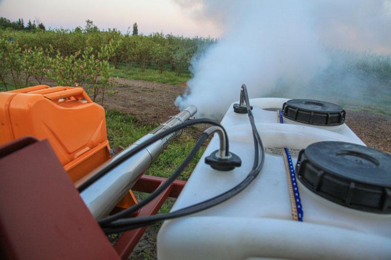 Туманообразователь на плантации голубики